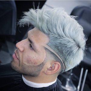 30-classy-silver-gray-mane