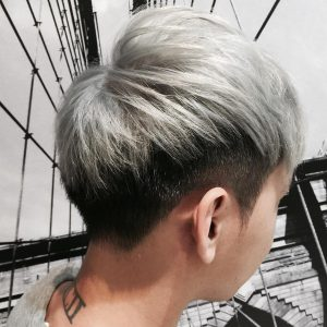 23-frosty-gray-with-silver