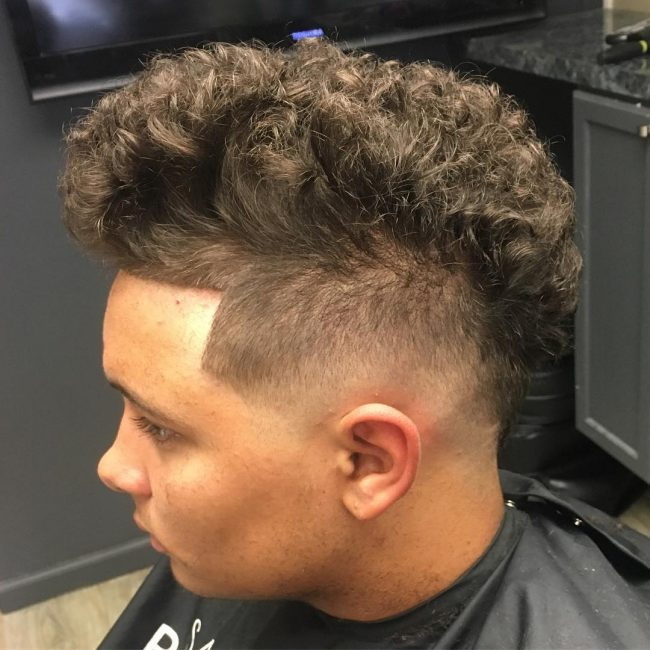 thick-and-curly-hawk