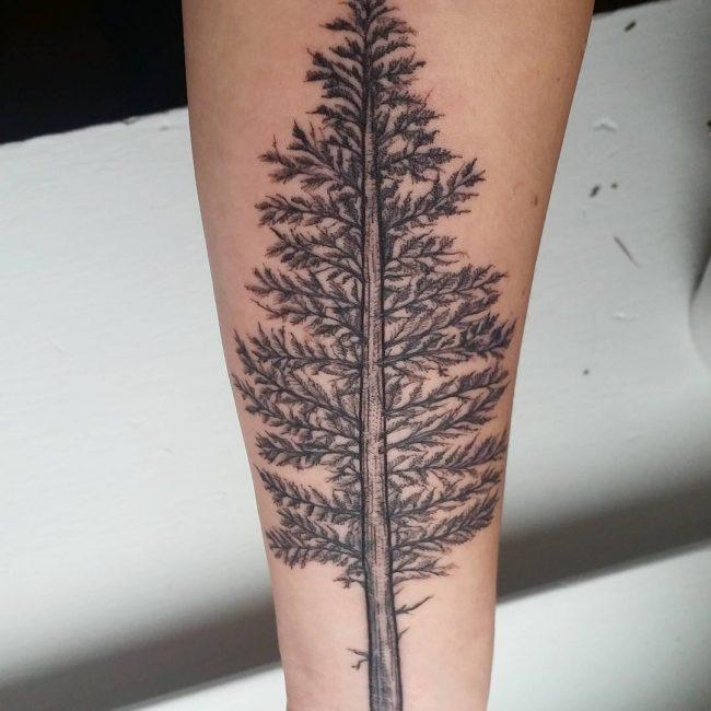 TreeTattoo15