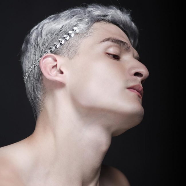 19-silver-mane