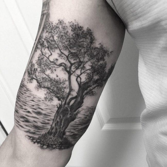 TreeTattoo36