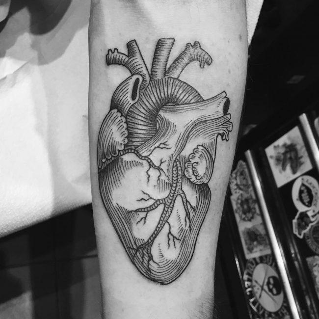 anatomical-heart-tattoo-16