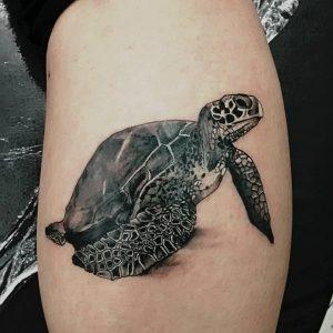 turtle-tattoo-21