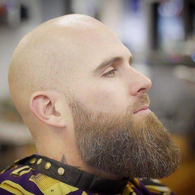14 Fresh Bald Cut