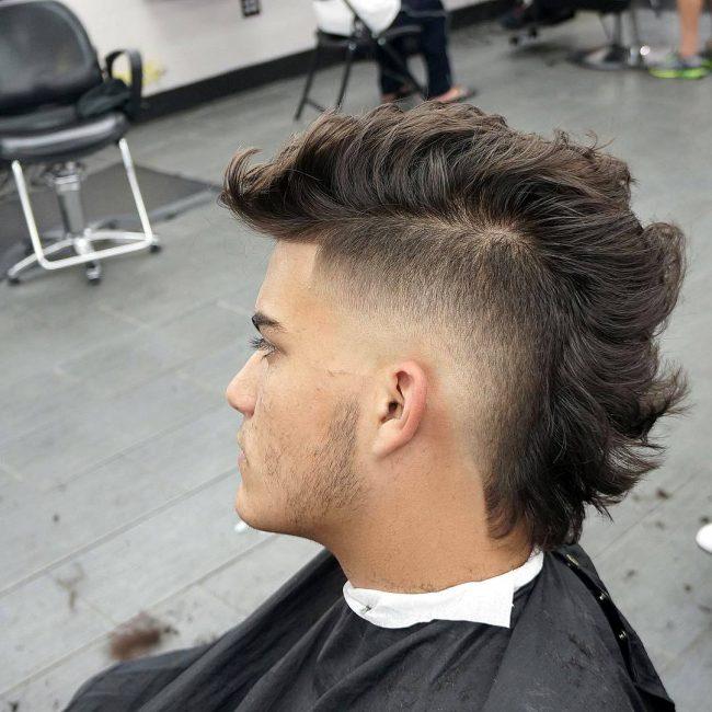 39 Curly Hawk