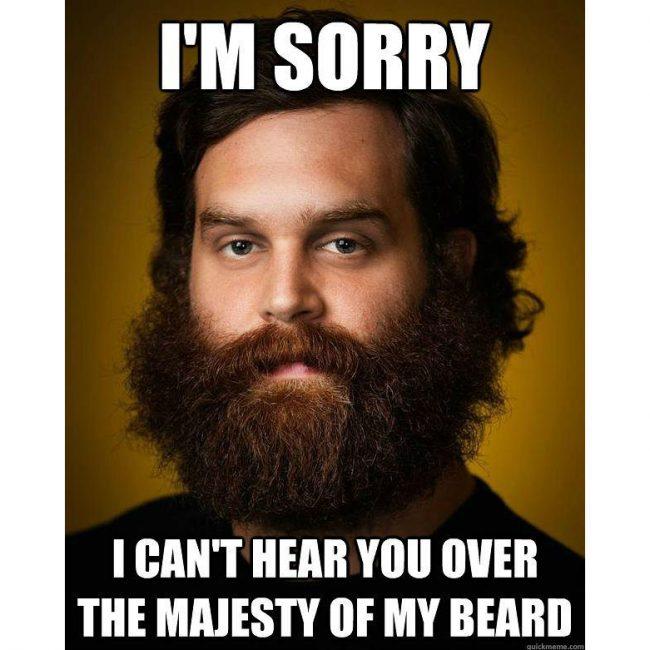 BeardMeme15