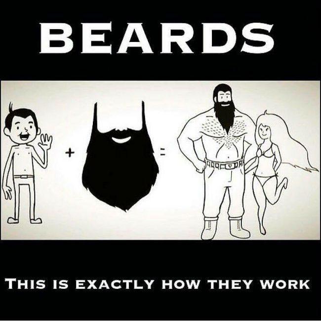 BeardMeme21