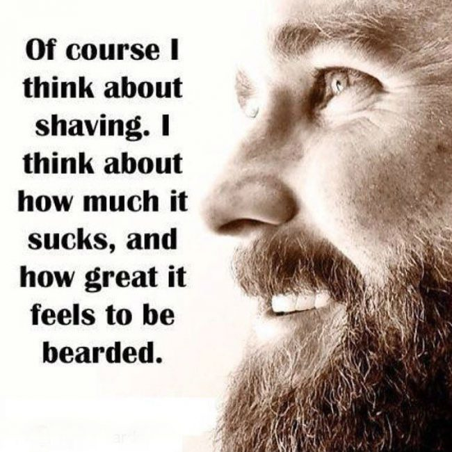 BeardMeme26