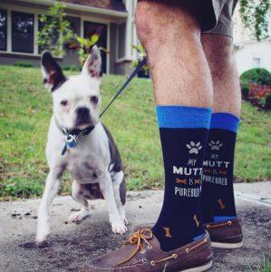 27 Mutt Men's Socks