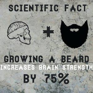 BeardMeme29