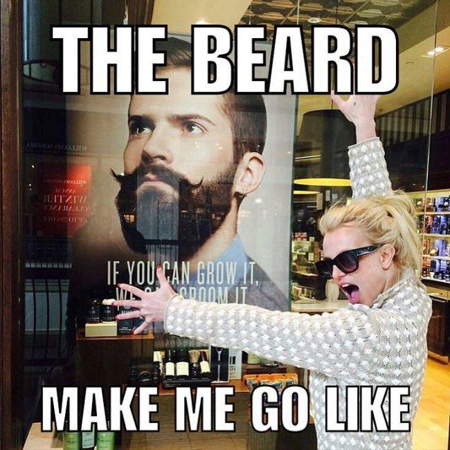 BeardMeme41