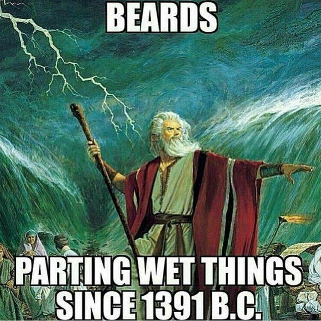 BeardMeme44