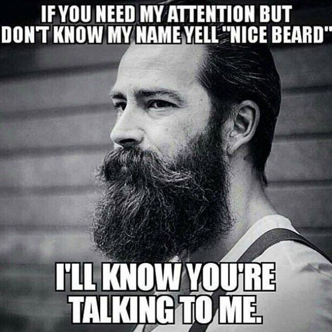 BeardMeme45