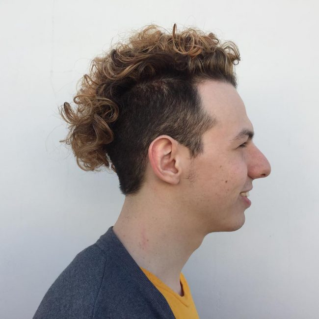 6 Curly Copper Mohawk