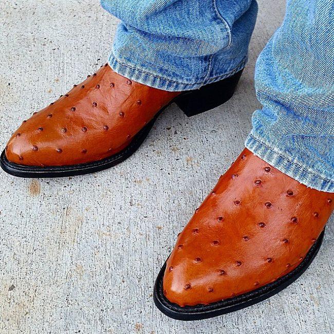 19 Ostrich Print Cowboy Boots