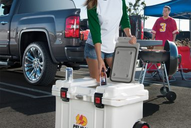 Top 10 Best Pelican Coolers Reviews — Complete Buying Guide